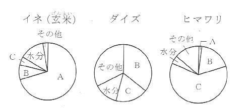 種子の成分 グラフ.jpg